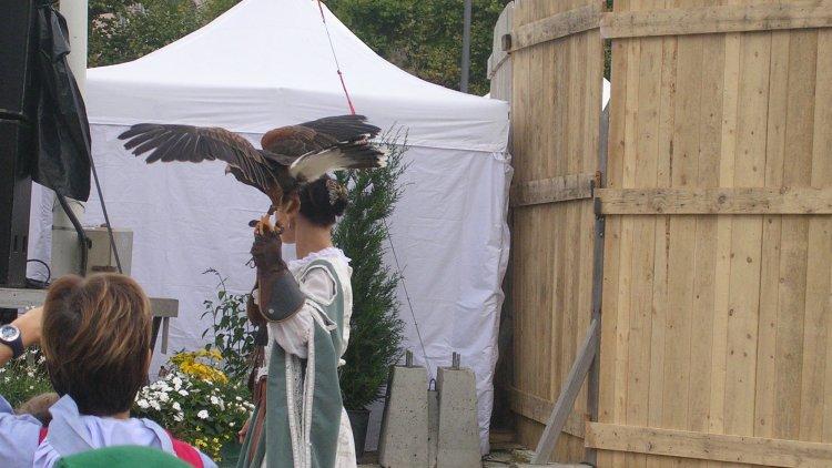 Le Roi de l'oiseau