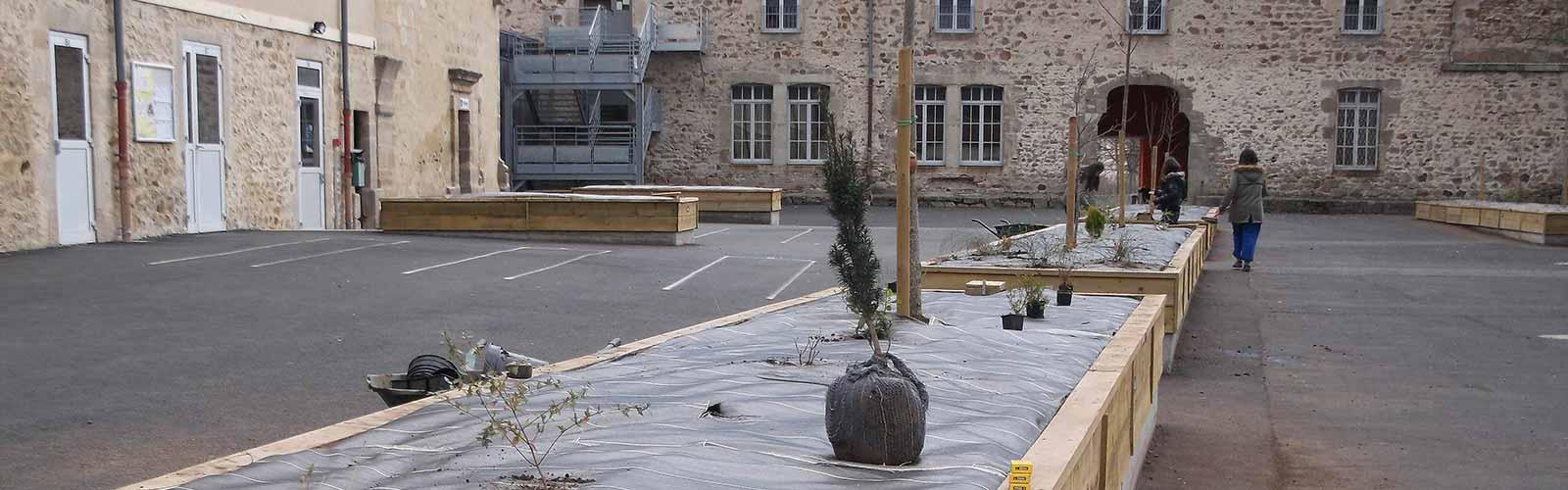 aménagement de la cour du collège : plantation d'arbres - formations