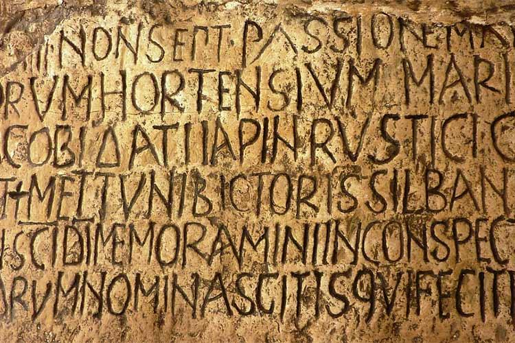 photo section latin
