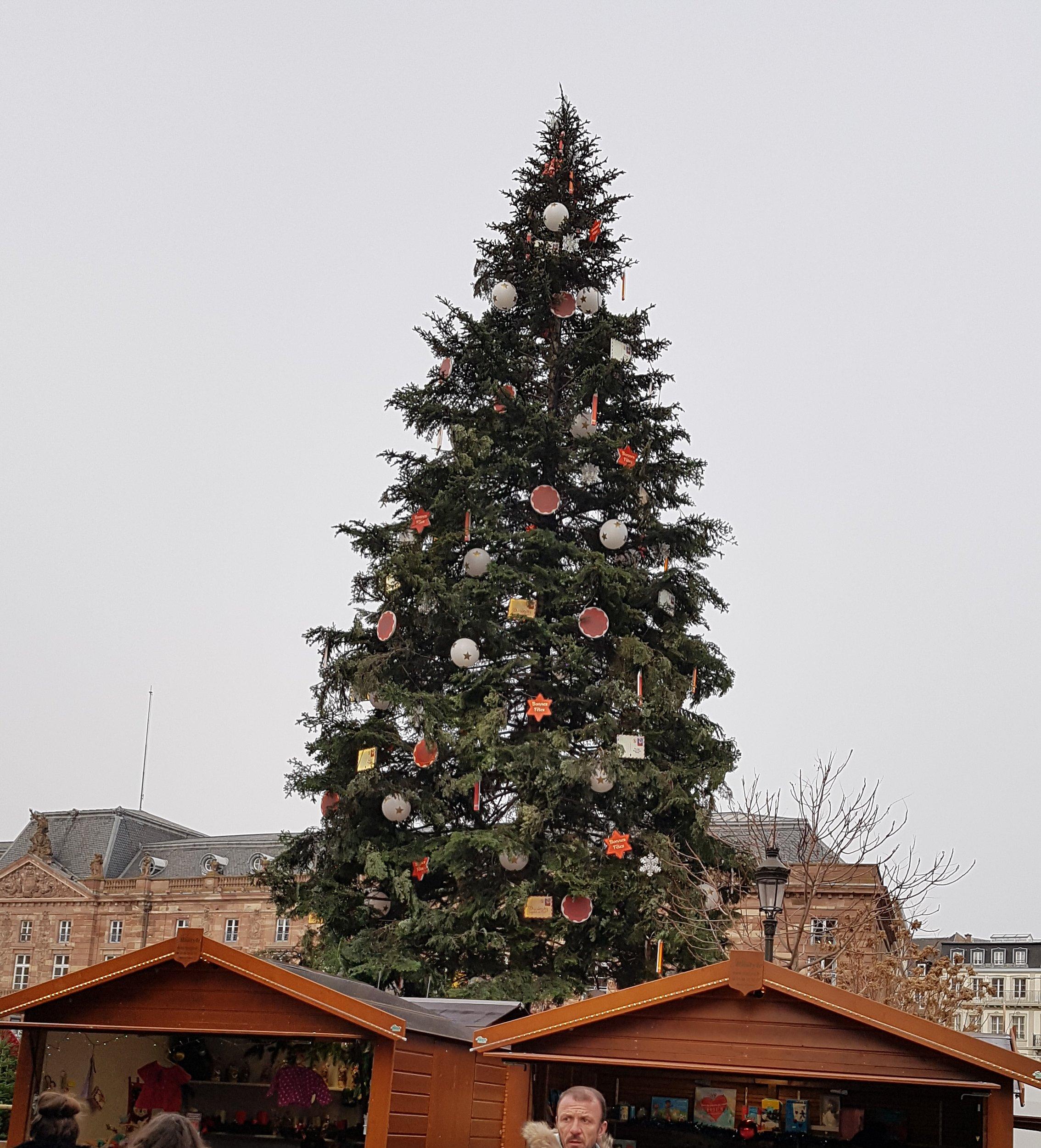 Strasbourg 2018 r01